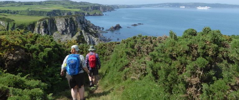 View from Foel y Mwnt in our Guided Walks in Pembrokeshire